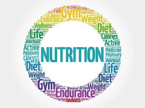 Les grands principes de la nutrition sportive