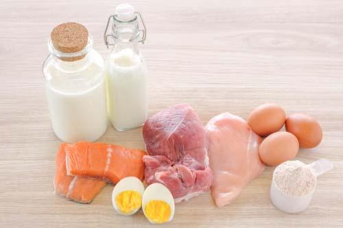 Les protéines alimentaires