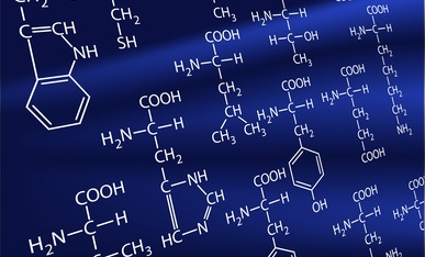 Les 9 acides aminés essentieks