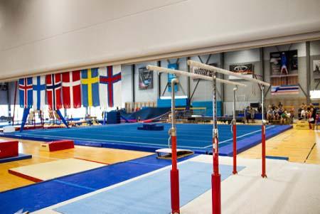 Les gymnastiques