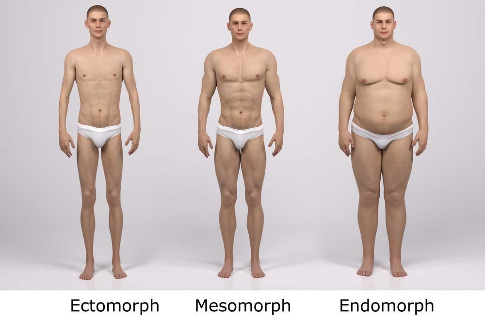 Connaissez-vous votre morphologie?