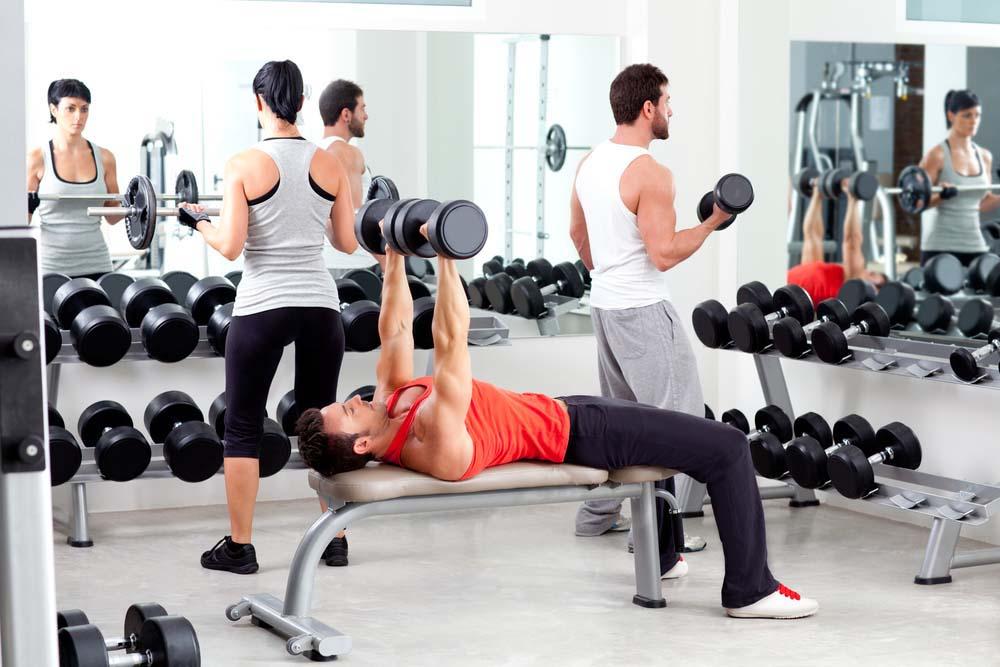 Niveau intermédiaire en musculation