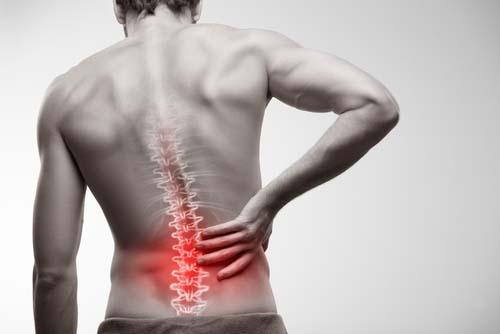 La musculation renforce votre dos