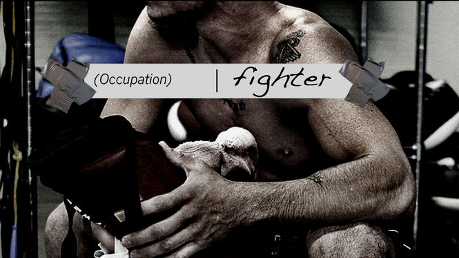 Occupation fighter Netflix