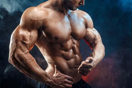 Pliométrie et construction musculaire