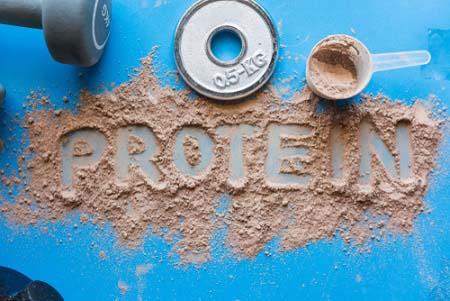 Les protéines et la récupération musculaire