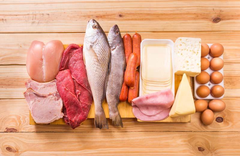 Les protéines en nutrition sportive
