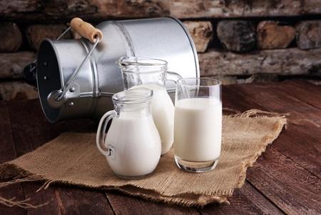 Protéine de lait