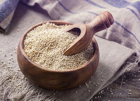 Le quinoa est riche en protéines