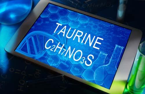 L'acide aminé taurine