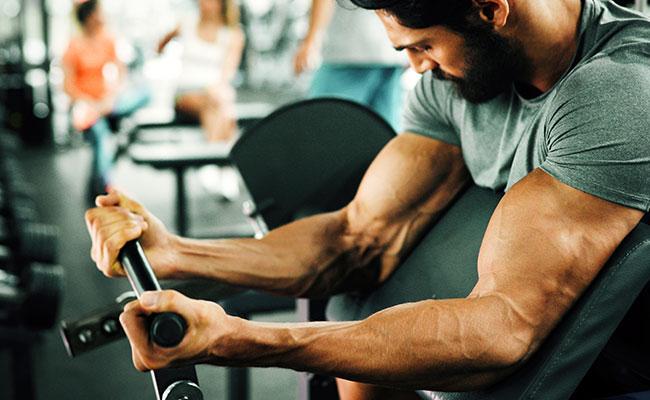 Séance biceps
