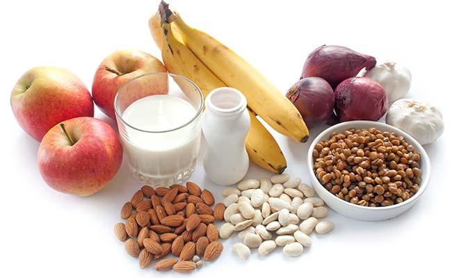 Aliments riches en probiotiques