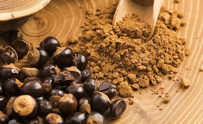 Graine et poudre de guarana