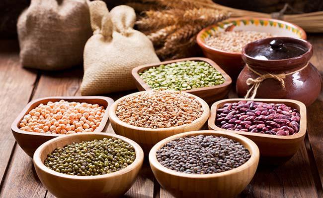 Différentes sources de protéines végétales